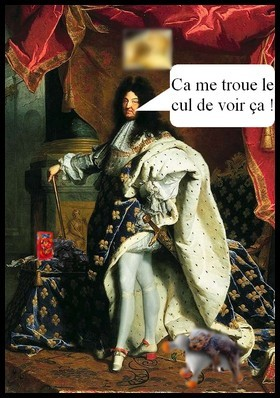 http://silverthorn.cowblog.fr/images/Articles/LouisXIV.jpg